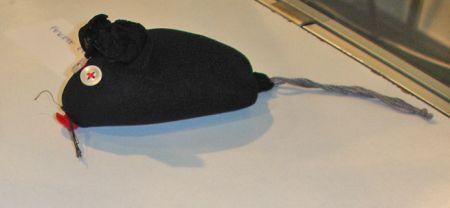 Fekete egér