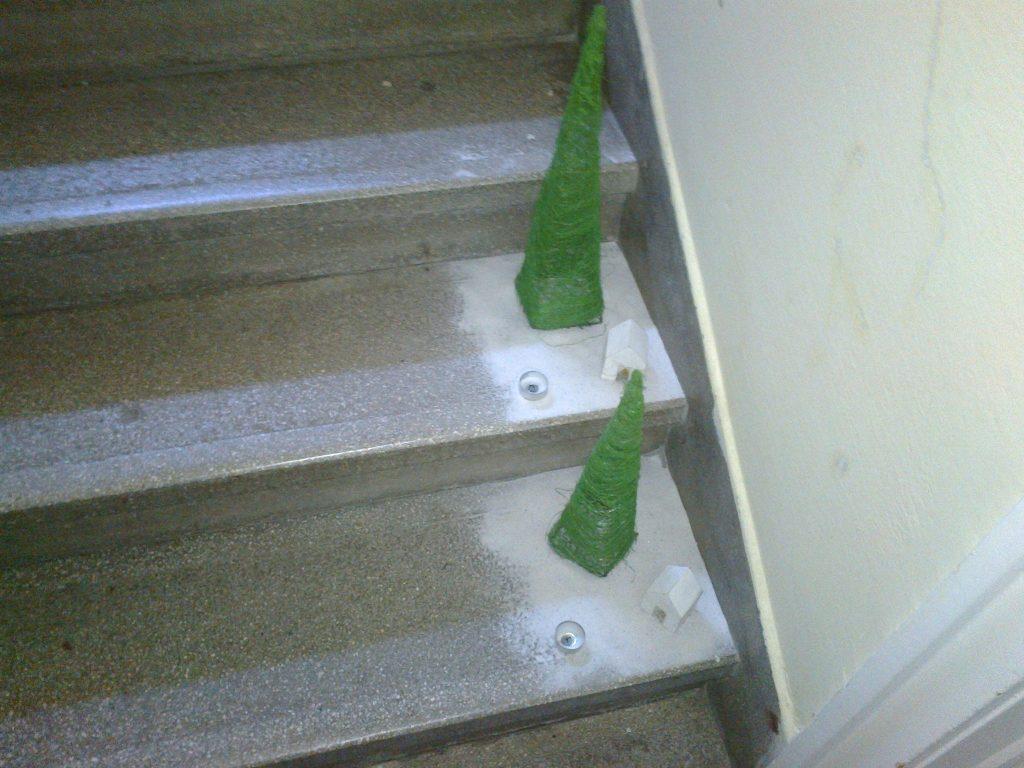 Fenyőerdő a lépcsőházban